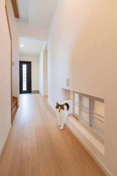 多彩なアイデアから叶えた、新築のように快適なわが家2